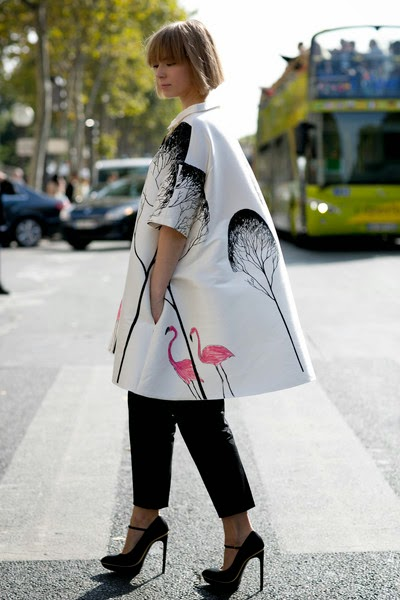 http://www.stylebistro.com/runway/Paris+Fashion+Week+Spring+2014/Attendees/_peOG7-OSLt